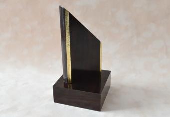 Trofeu din lemn cu finisaje aurii din ABS