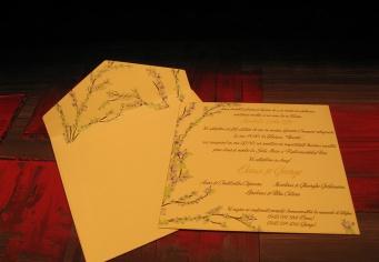 Invitati nunt cu plic inclus personalizata