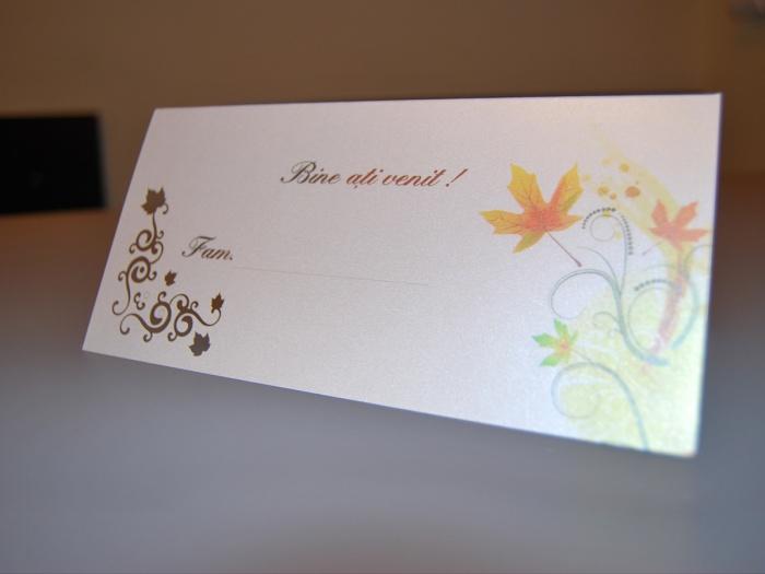 Set decor masa nunta