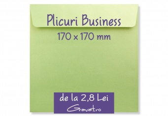 Plicuri Patrate Business Colorate 170 x 170 mm